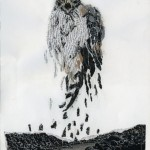"""Hawk"" 2008, collage, 8""x10'"