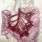 Mesocolon Looks Like Butterfly Wings, embroidery and drawing on mixed paper, approx 8x10, 2015